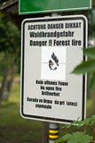 Danger. Forest fire Stock Photos