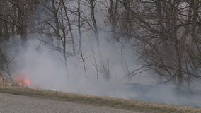 Danger of forest fire - smoke and fire. On the field near the forest. This wood fire footage appropriate to visualize wildfire or prescribed burning stock footage