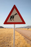 Danger Giraffes Road Sign Royalty Free Stock Photos