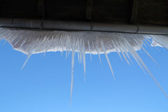 Danger icicles Stock Photography