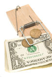 Danger - money in the mousetrap Royalty Free Stock Photography