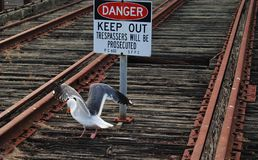 Danger on rail tracks, keep out Royalty Free Stock Images