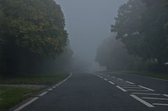 Danger road on a foggy, autumn day. Road through the autumn forest. Danger road on a foggy day. Road through the autumn forest Royalty Free Stock Image