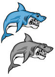 Danger sharks Stock Image