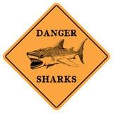 Danger sharks Stock Photos