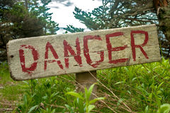Danger sign. In the woods on a tree Royalty Free Stock Image