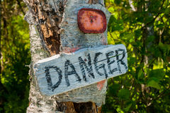 Danger sign. In the woods on a tree Stock Photography