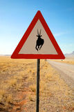 Danger Springboks Road Sign Royalty Free Stock Photos