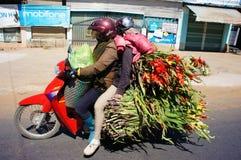 Danger traffic, transport, overload, motorbike, Vietnam Royalty Free Stock Images