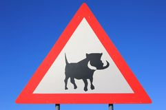 Danger - Warthog and Wildlife Crossing Road Sign - Road Hogs watch out for the pigs Royalty Free Stock Image