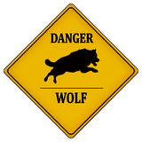 Danger wolf Royalty Free Stock Photo