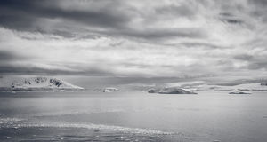 Dangeros Antarctic ocean Royalty Free Stock Image
