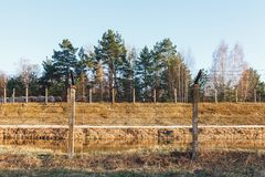 Dangerous area fenced with barbed wire fence royalty free stock image