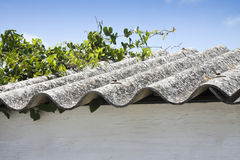 Dangerous asbestos roof. Medical studies have shown that the asbestos particles can cause cancer - space fot text insertione Stock Photo