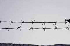 Dangerous barbed wire to demarcate the prison camp Stock Image