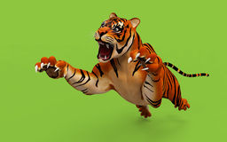 Dangerous Bengal Tiger roaring and jumping Stock Images