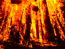 Dangerous big fire powerful element Royalty Free Stock Photography