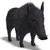 Dangerous black boar is stiff-bristled. 3D rendering of a dangerous black boar is stiff-bristled with clipping path and shadow over white Stock Images
