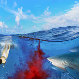 Dangerous bloody shark diving. Image split two parts underwater and seaview. Sharks attack swimmers underwater through cloud of blood royalty free stock photography