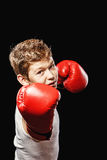 Dangerous boy boxer Stock Images