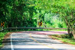 A dangerous curve on a roadway in which drivers cannot see approaching traffic. And must drive slowly beautiful bend beware caution curves deserted path fog stock images