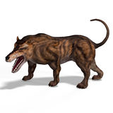Dangerous Dinosaur Andrewsarchus With Clipping Royalty Free Stock Image