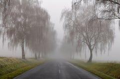 Dangerous fog Royalty Free Stock Image
