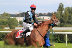 Dangerous gleam - horse racing in Prague Stock Image