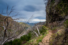 Dangerous hiking path at the mountains of Madeira island. Stock Photo