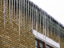 Dangerous icicles Stock Image