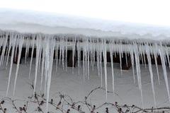Dangerous icicles Stock Photo