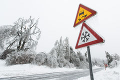 Dangerous and icy road. With sleet covered fallen trees royalty free stock photography