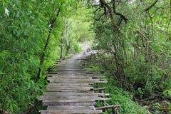 Dangerous if broken wooden bridge Royalty Free Stock Photos