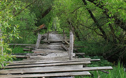 Dangerous if broken wooden bridge Royalty Free Stock Photo