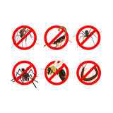 6 dangerous insects awareness. 6 dangerous insects such as mosquito, scorpion, spider, ant, bee, centipede Royalty Free Stock Photos