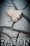 Dangerous radon concept image with isolated dry leaf on background - concept image stock images
