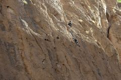 Rock climbing in Morocco Stock Image