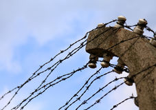 Dangerous and sharp barbed wire Royalty Free Stock Image