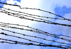 Dangerous and sharp barbed wire to demarcate the prison camp Stock Photos