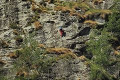 Climber on rocky wall. A dangerous sport on rocky wall stock images