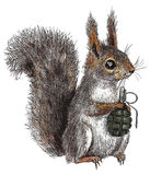 Dangerous squirrel. Anti-war picture. Caricature about modern intensity in policy Stock Image
