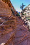 Dangerous trail in Zion National Park, Angel's landing Royalty Free Stock Images