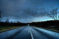 Dangerous Wet Road. Dangerous and wet road after rain in Tasmania, Australia Royalty Free Stock Image