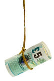 Dangling British pound. Held by a rope isolated on white background Royalty Free Stock Images