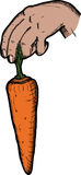 Dangling A Carrot Royalty Free Stock Photo