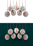 Dangling coins with the word big sale. On a green and white background Stock Photo