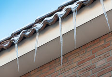 Dangling icicles on the eaves Stock Images