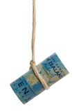Dangling New Zealand dollar Royalty Free Stock Image