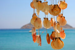 Dangling Shells in a Wind Chime Stock Image