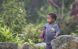 Dani部落孩子在他的后院 免版税库存图片
